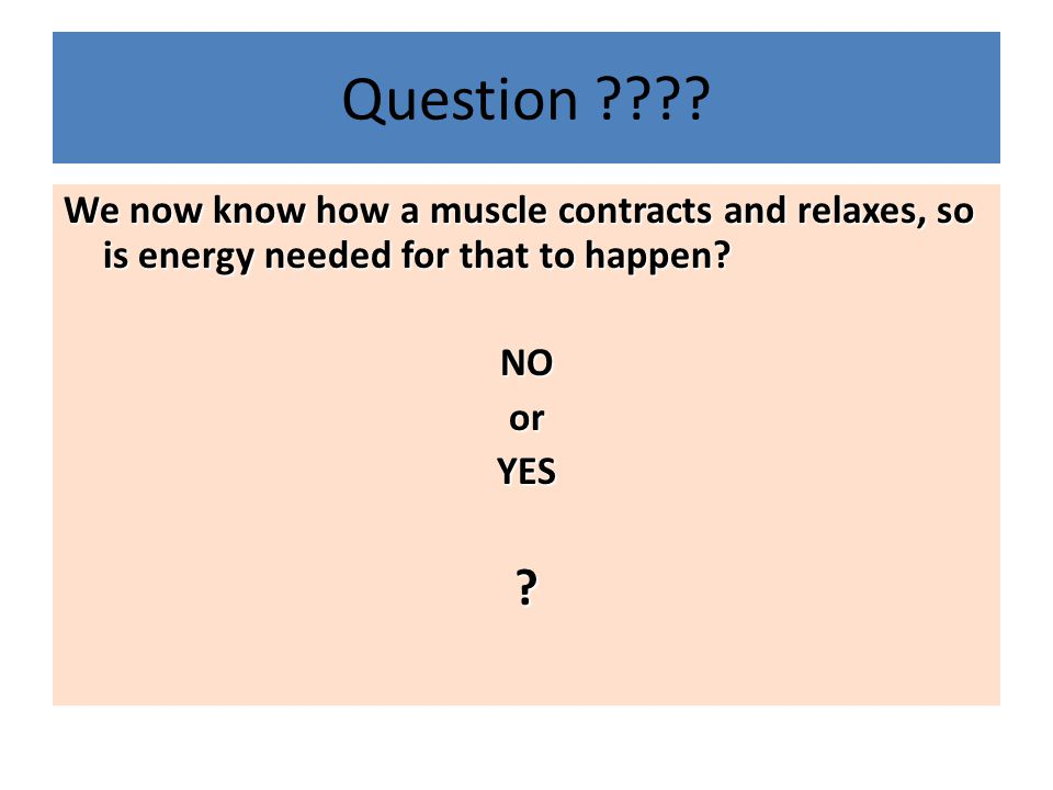 Question We now know how a muscle contracts and relaxes, so is energy needed for that to happen
