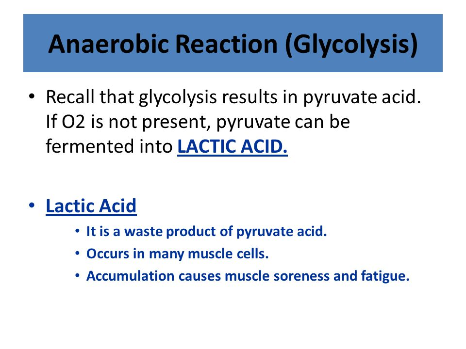 Anaerobic Reaction (Glycolysis)