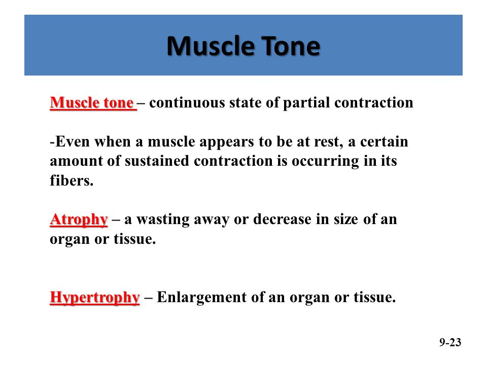 Muscle Tone Muscle tone – continuous state of partial contraction