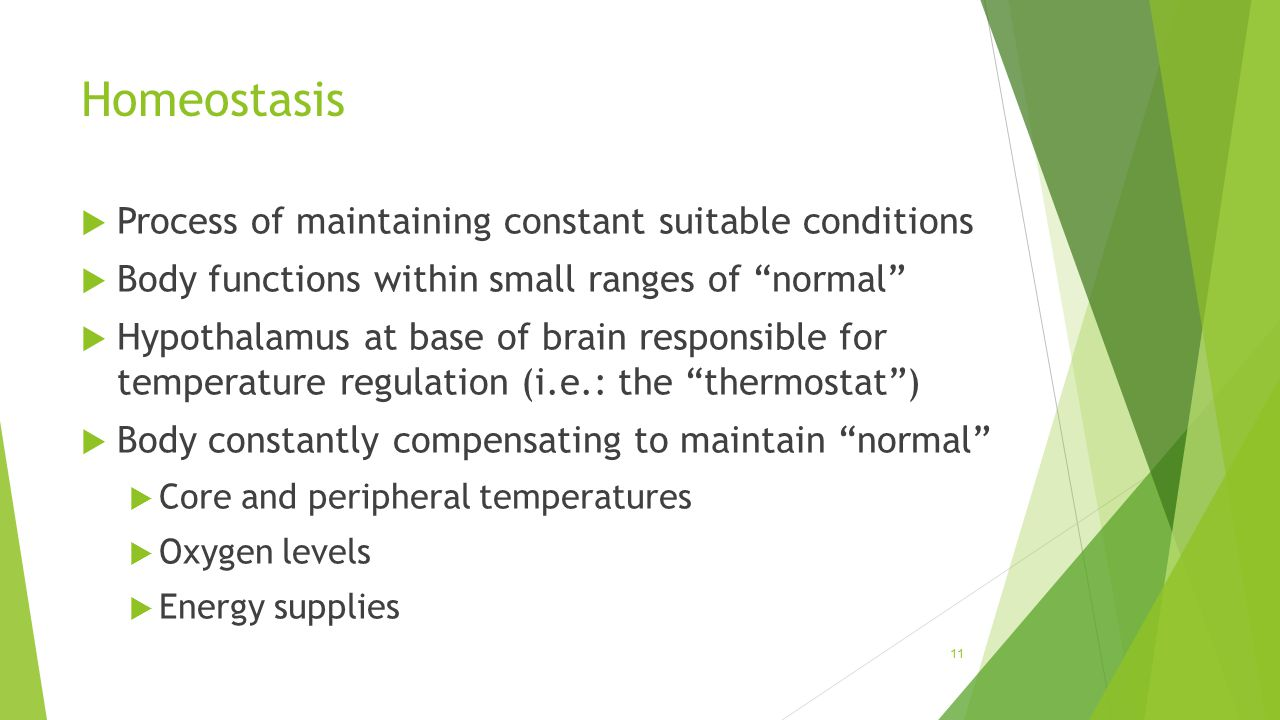 Homeostasis Process of maintaining constant suitable conditions