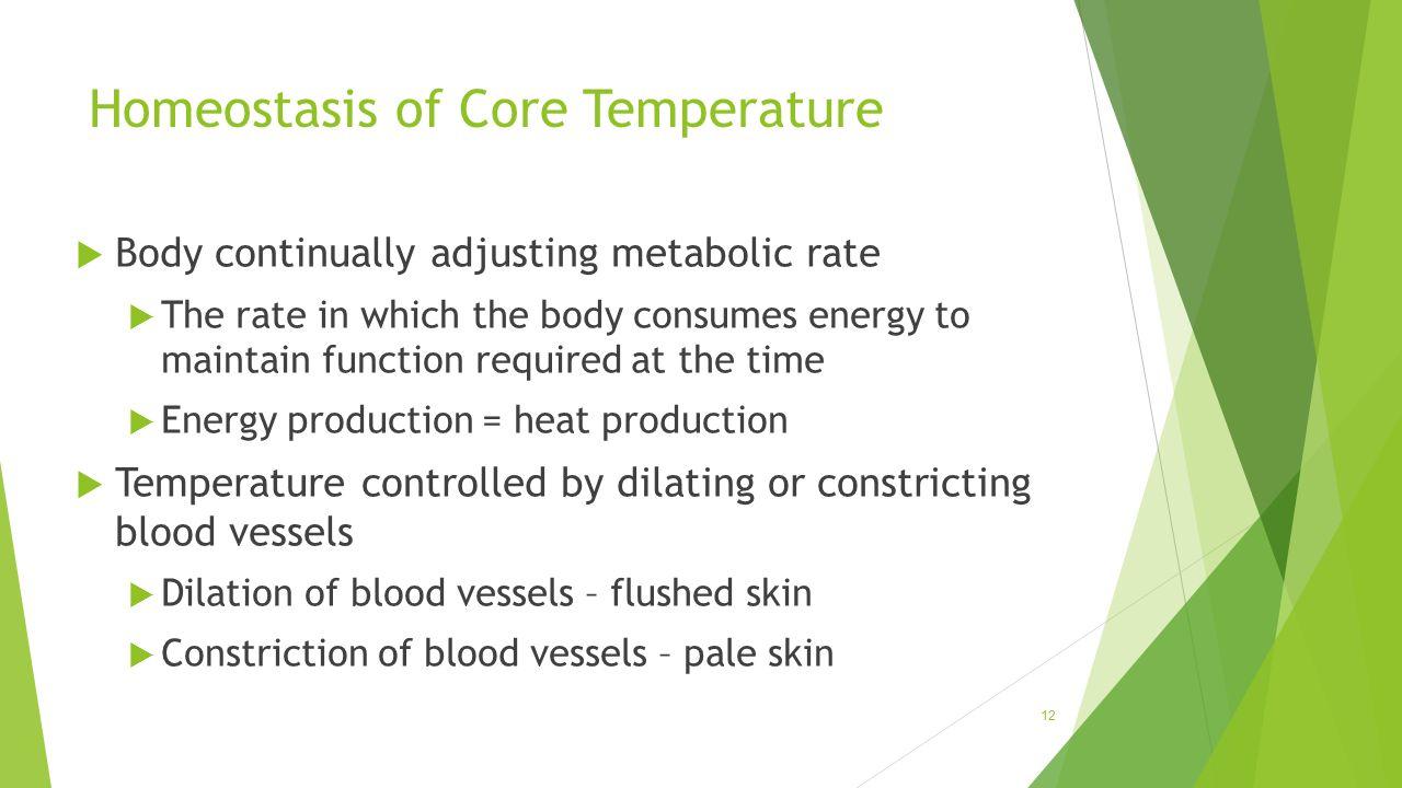 Homeostasis of Core Temperature