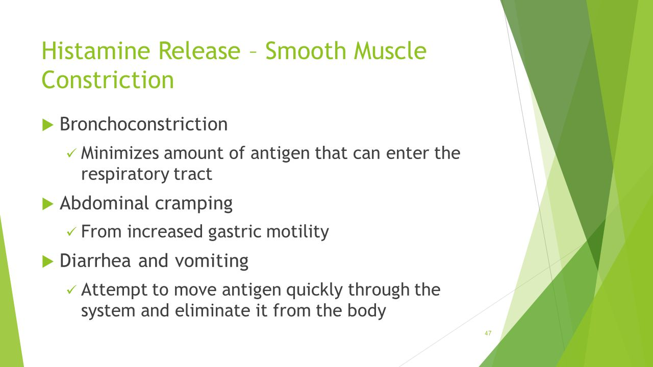 Histamine Release – Smooth Muscle Constriction