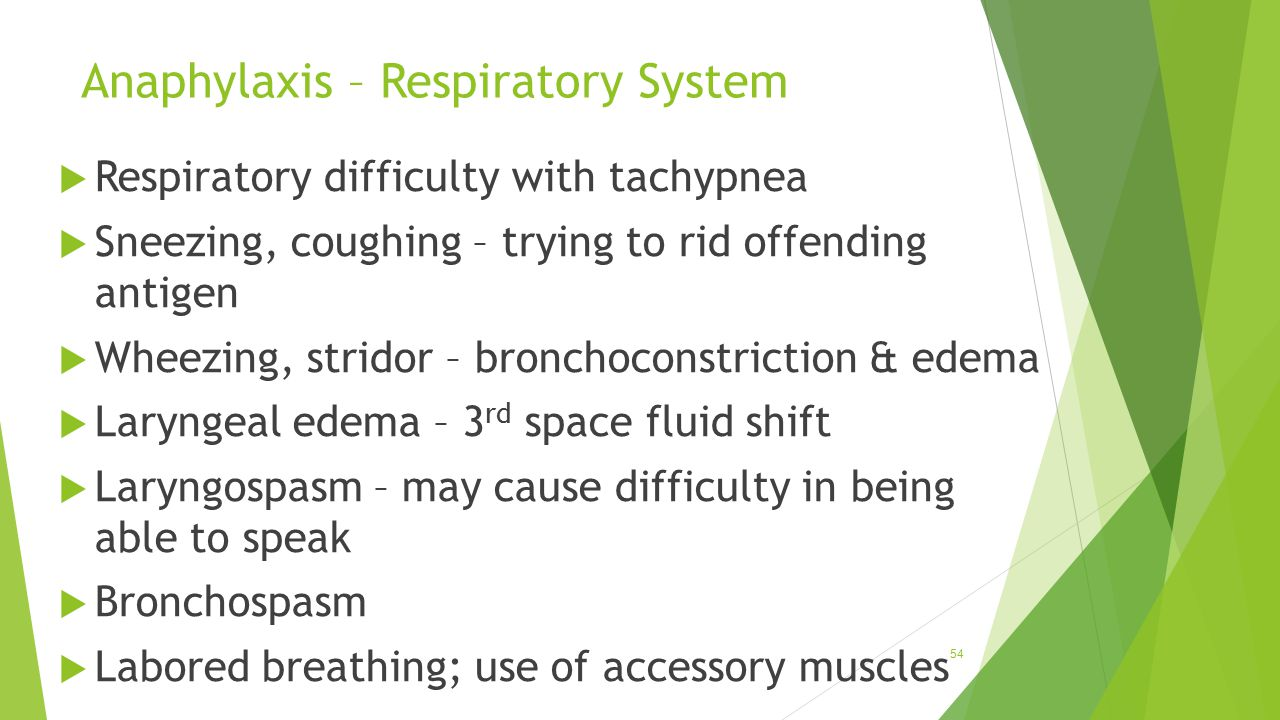 Anaphylaxis – Respiratory System