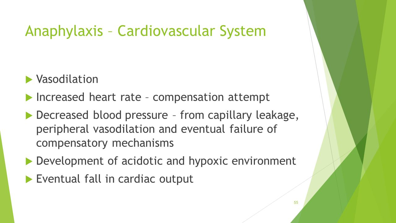 Anaphylaxis – Cardiovascular System