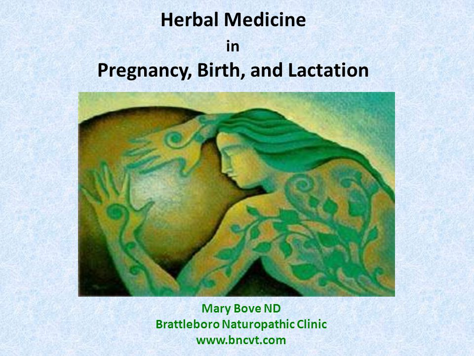 Herbal Medicine in Pregnancy, Birth, and Lactation