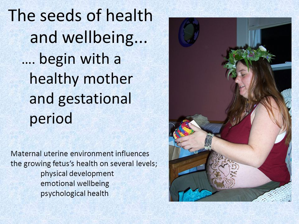 The seeds of health and wellbeing...
