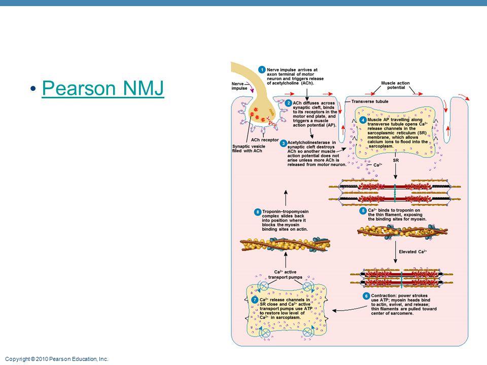 Pearson NMJ