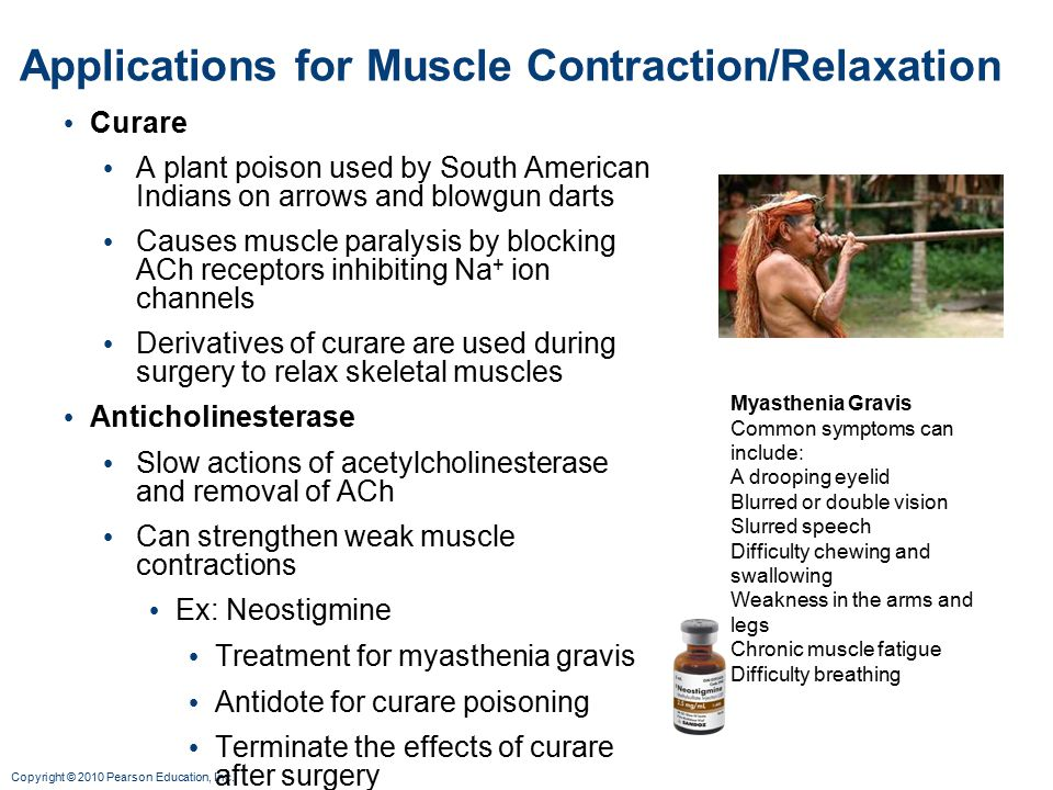Applications for Muscle Contraction/Relaxation