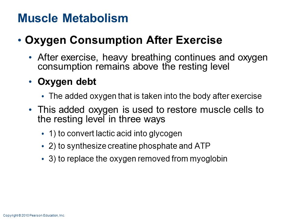 Muscle Metabolism Oxygen Consumption After Exercise