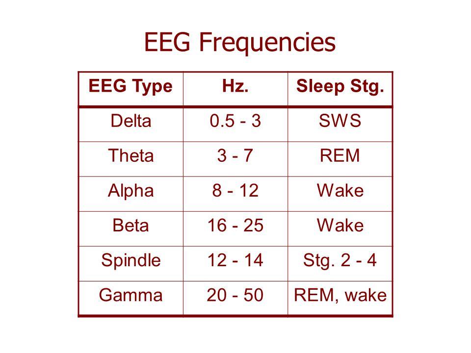 EEG Frequencies EEG Type Hz. Sleep Stg. Delta 0.5 - 3 SWS Theta 3 - 7