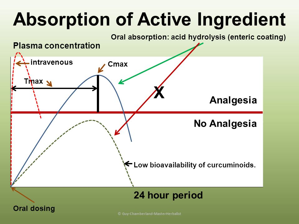 Absorption of Active Ingredient © Guy-Chamberland-MasterHerbalist