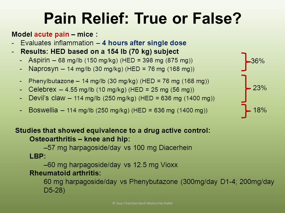 Pain Relief: True or False © Guy-Chamberland-MasterHerbalist