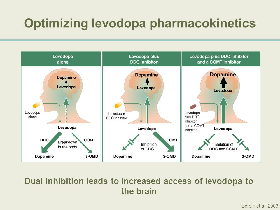 Optimizing levodopa pharmacokinetics