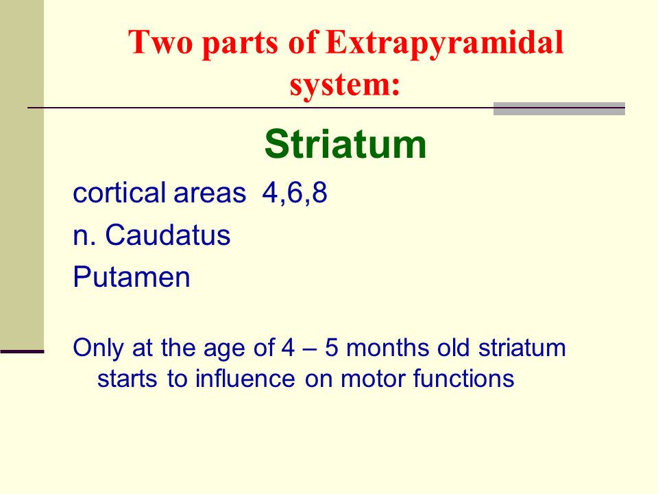 Two parts of Extrapyramidal system: