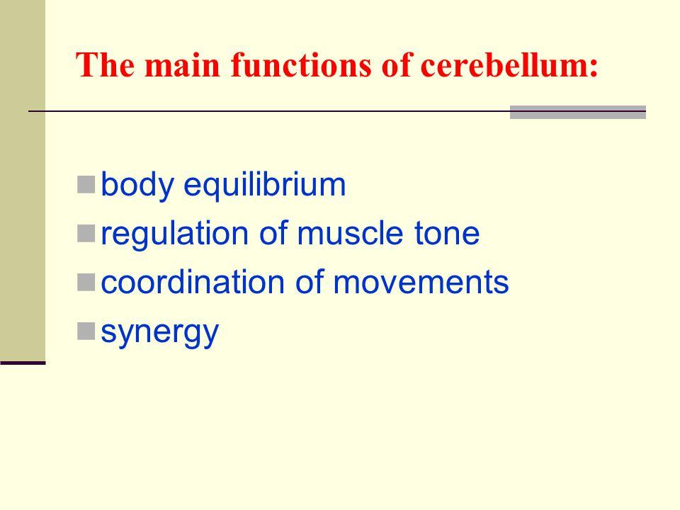 The main functions of cerebellum: