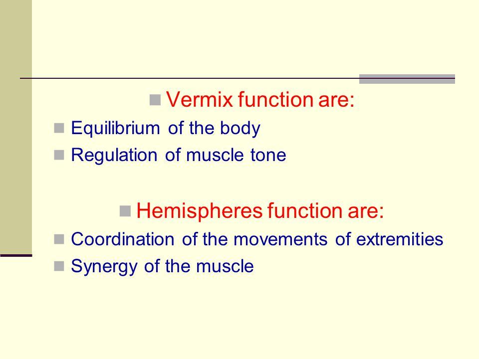 Hemispheres function are: