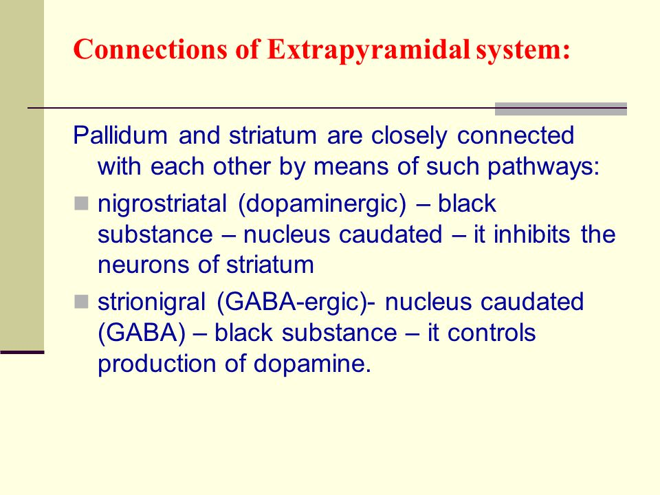 Connections of Extrapyramidal system: