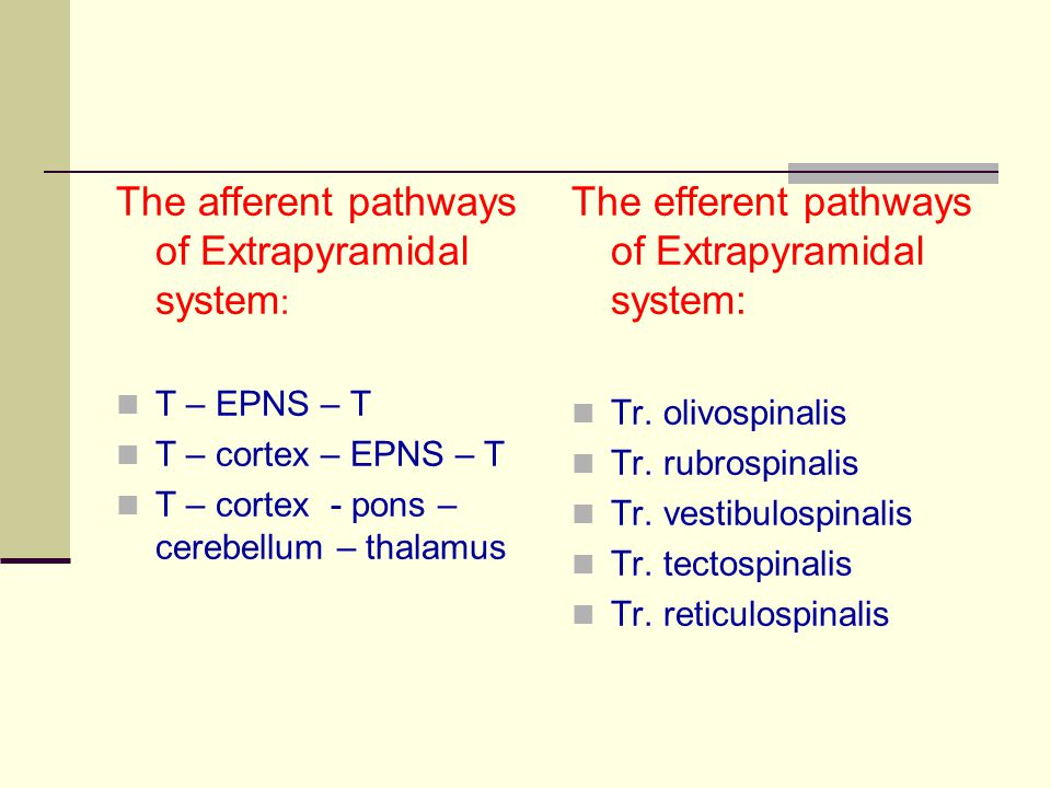 The afferent pathways of Extrapyramidal system: