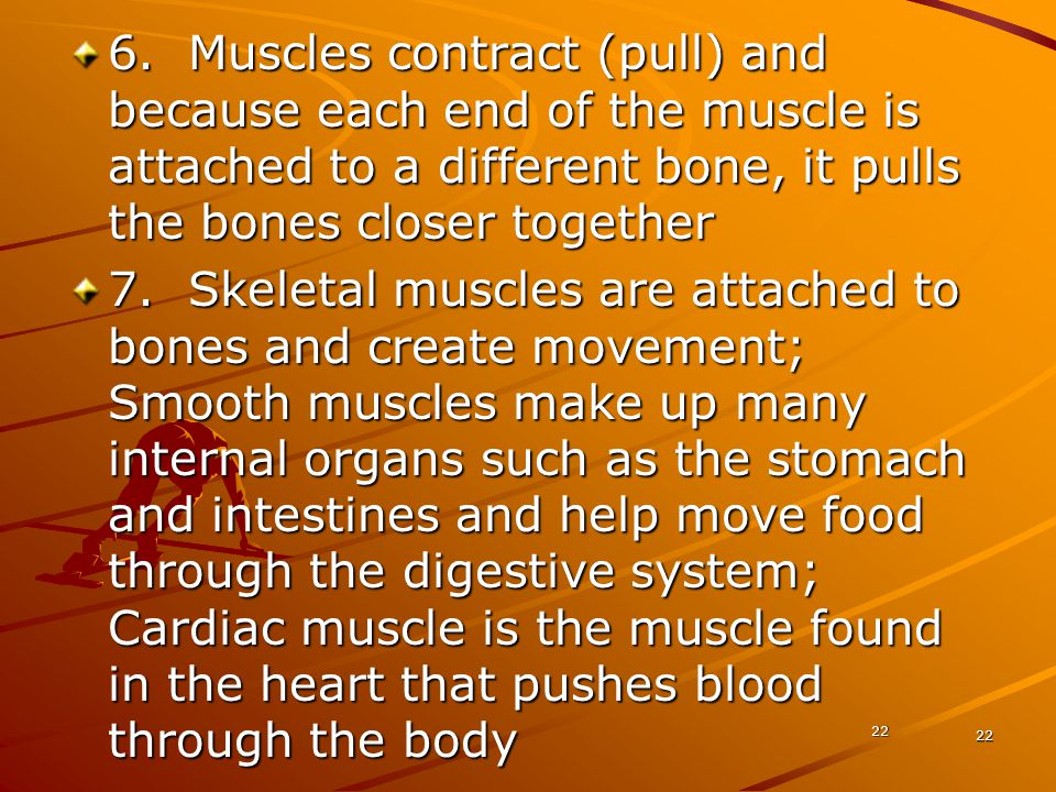 6. Muscles contract (pull) and because each end of the muscle is attached to a different bone, it pulls the bones closer together