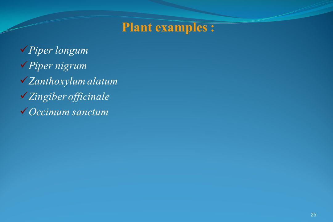 Plant examples : Piper longum Piper nigrum Zanthoxylum alatum