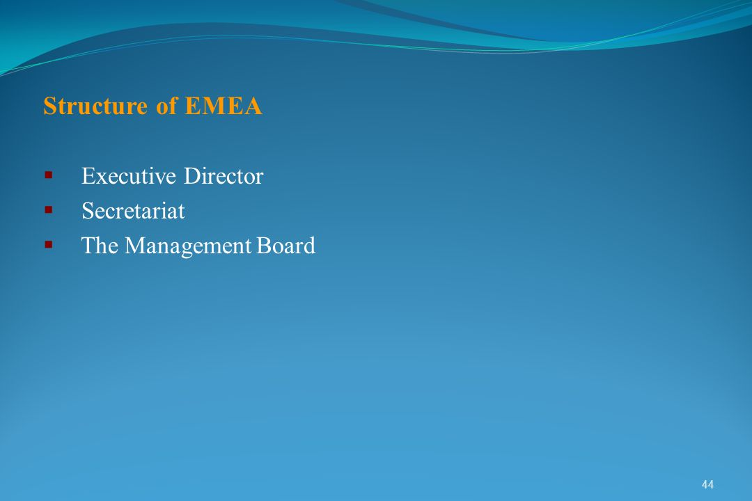 Structure of EMEA Executive Director Secretariat The Management Board
