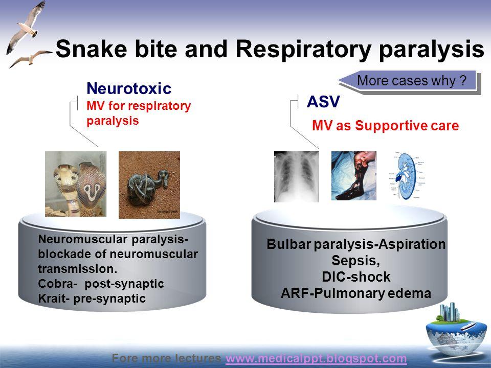 Snake bite and Respiratory paralysis