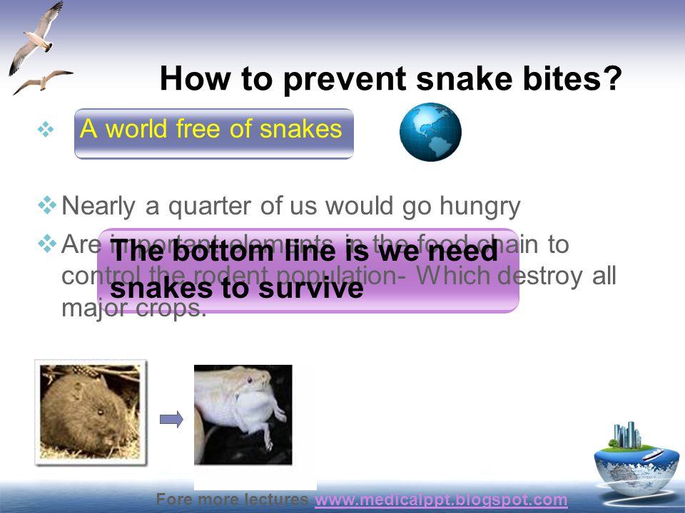 How to prevent snake bites