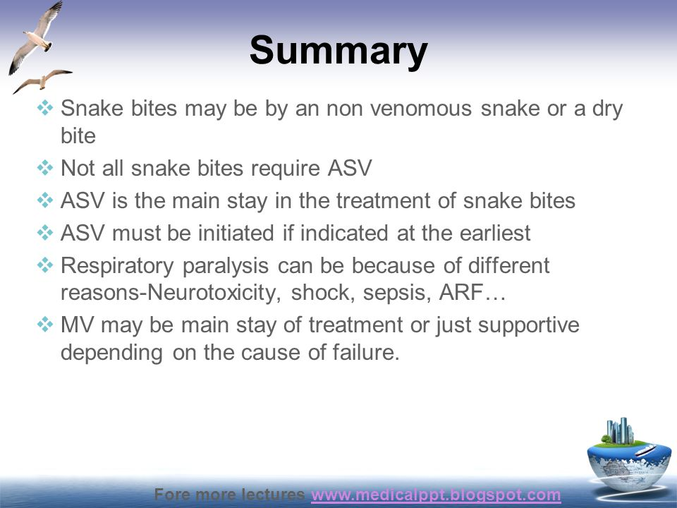 Summary Snake bites may be by an non venomous snake or a dry bite