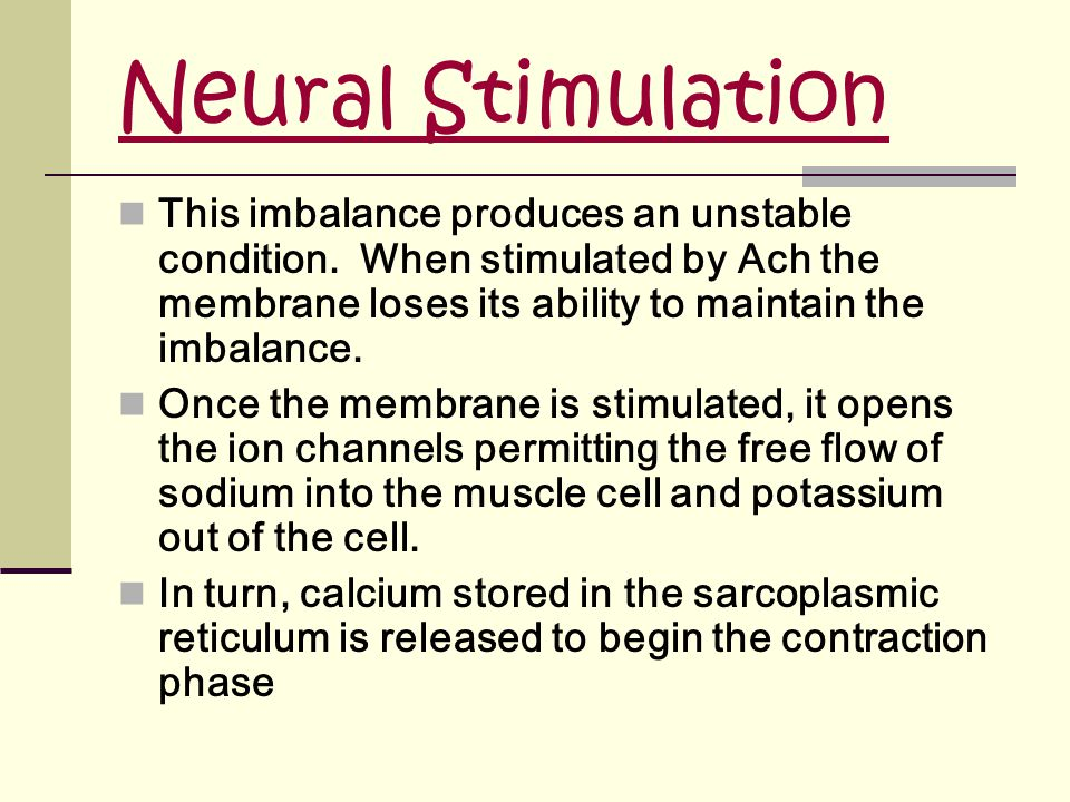 Neural Stimulation This imbalance produces an unstable condition. When stimulated by Ach the membrane loses its ability to maintain the imbalance.