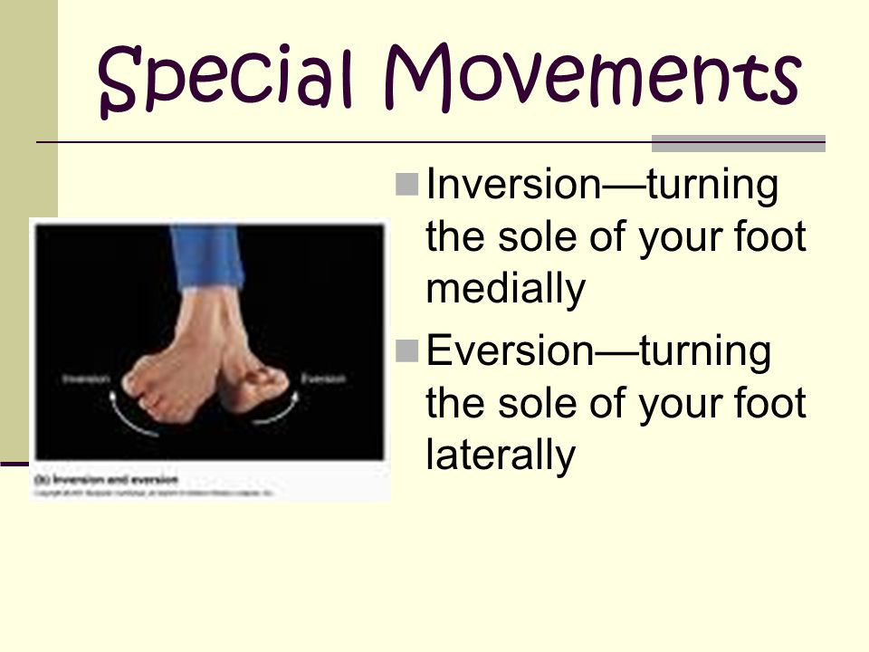 Special Movements Inversion—turning the sole of your foot medially