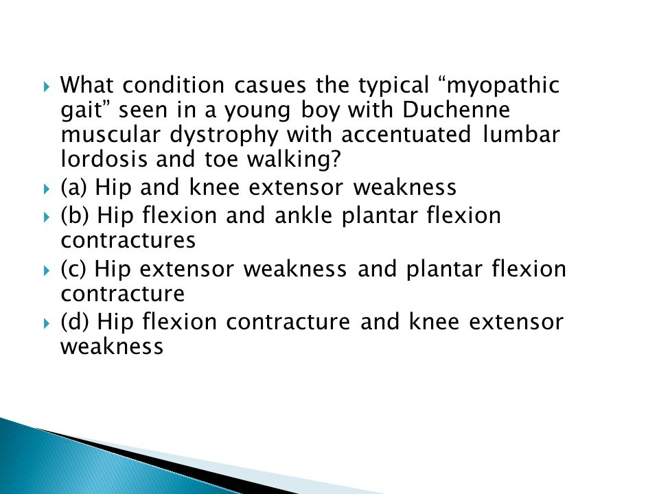 What condition casues the typical myopathic gait seen in a young boy with Duchenne muscular dystrophy with accentuated lumbar lordosis and toe walking