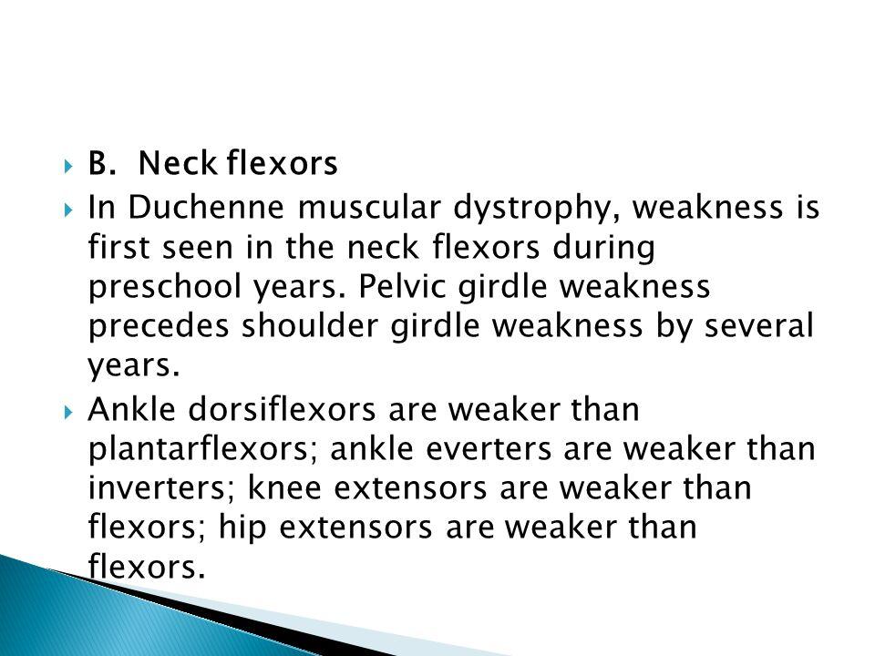 B. Neck flexors