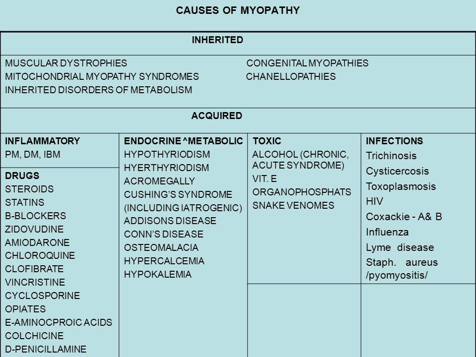 Staph. aureus /pyomyositis/