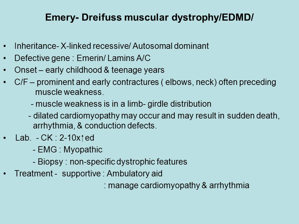 Emery- Dreifuss muscular dystrophy/EDMD/