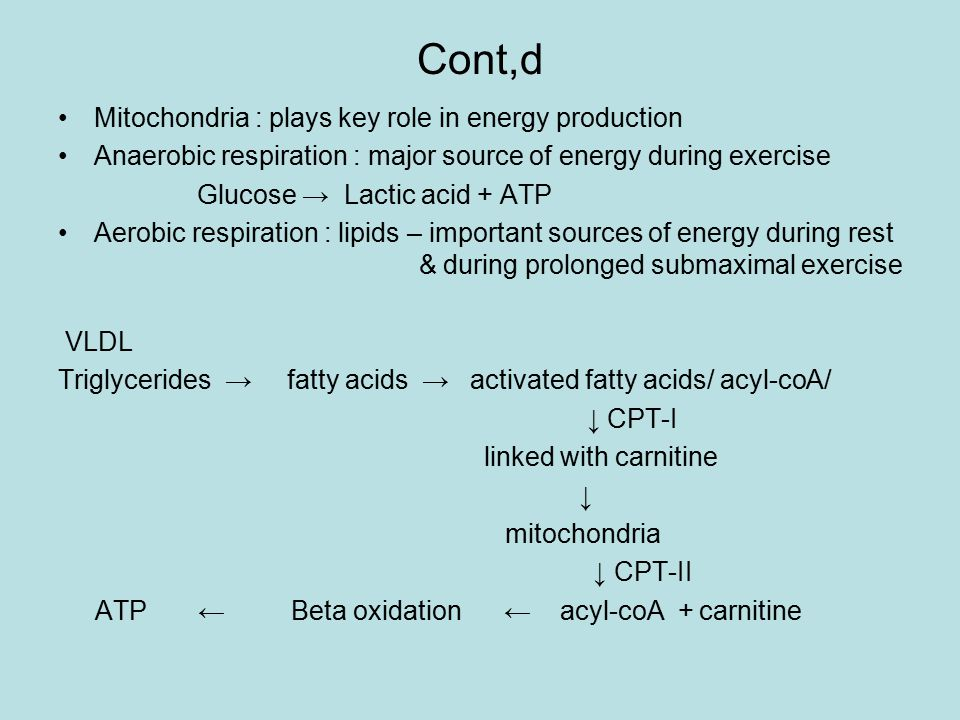 Cont,d Mitochondria : plays key role in energy production