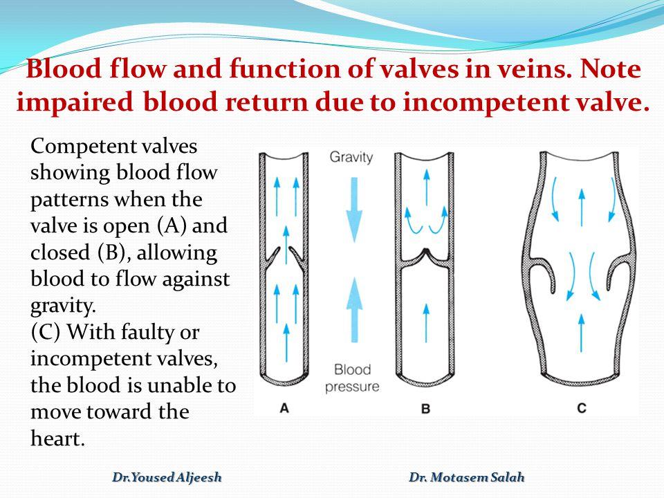 Dr.Yoused Aljeesh Dr. Motasem Salah