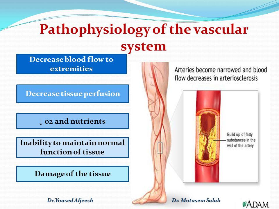 Pathophysiology of the vascular system