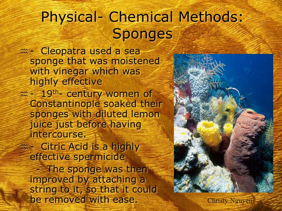 Physical- Chemical Methods: Sponges