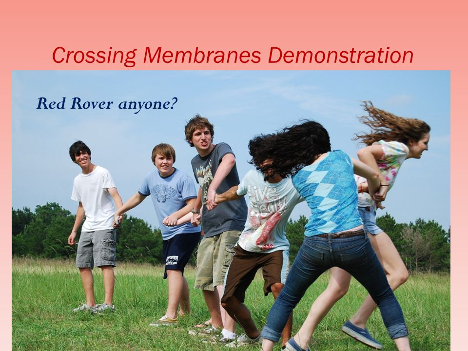 Crossing Membranes Demonstration