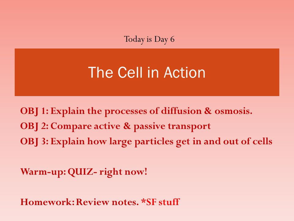 Today is Day 6 The Cell in Action. OBJ 1: Explain the processes of diffusion & osmosis. OBJ 2: Compare active & passive transport.