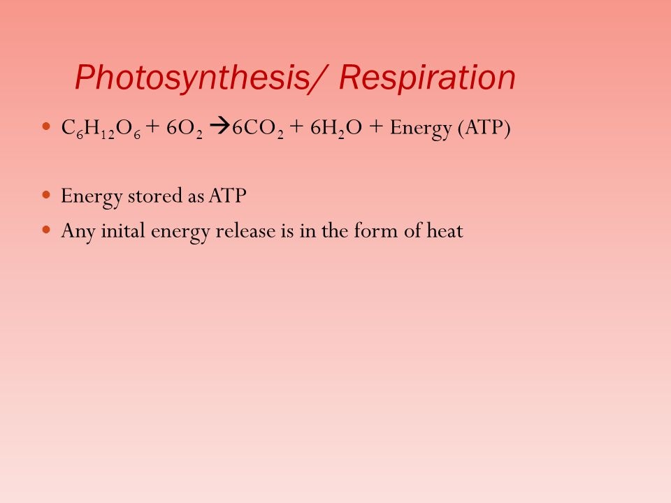 Photosynthesis/ Respiration