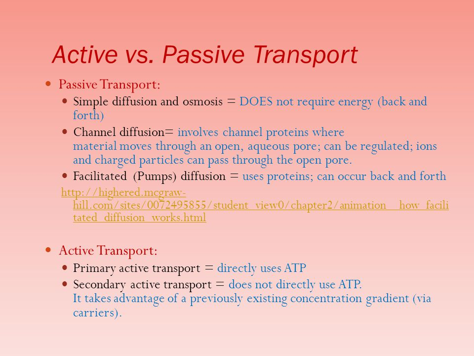 Active vs. Passive Transport