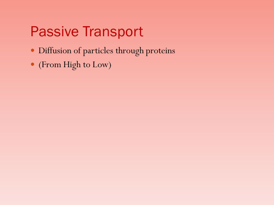 Passive Transport Diffusion of particles through proteins