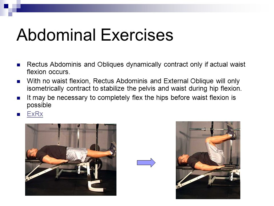 Abdominal Exercises Rectus Abdominis and Obliques dynamically contract only if actual waist flexion occurs.