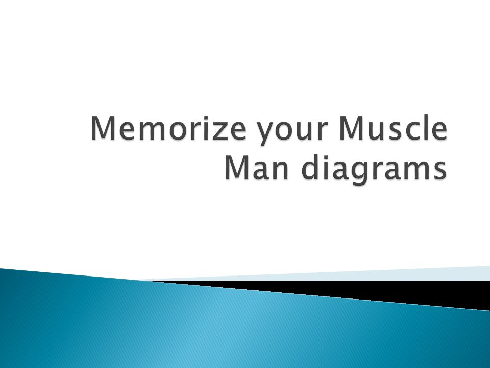 Memorize your Muscle Man diagrams