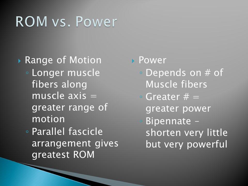 ROM vs. Power Range of Motion