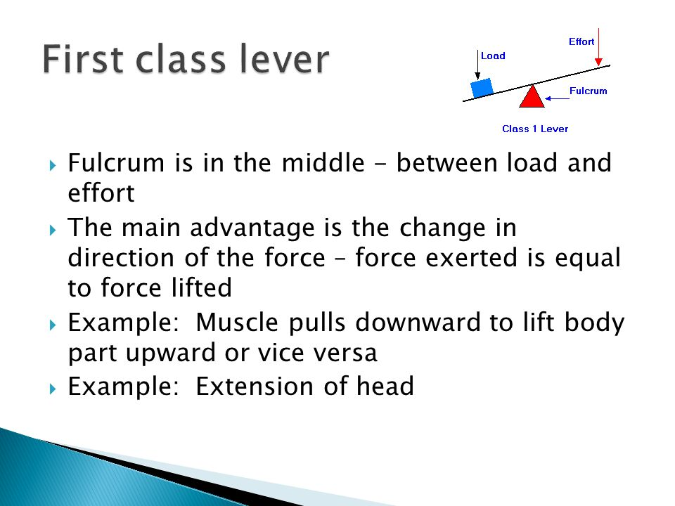 First class lever Fulcrum is in the middle - between load and effort