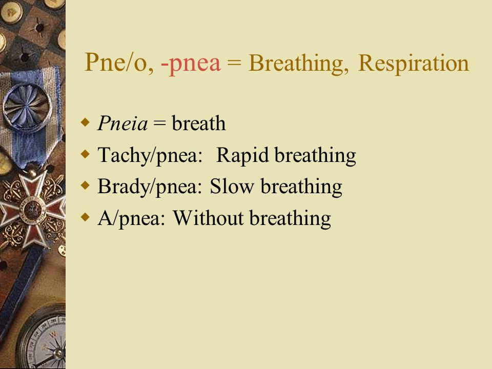 Pne/o, -pnea = Breathing, Respiration