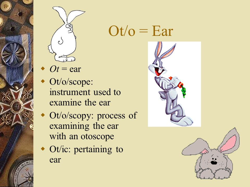 Ot/o = Ear Ot = ear Ot/o/scope: instrument used to examine the ear