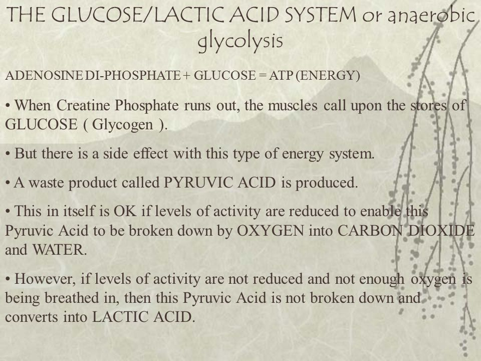 THE GLUCOSE/LACTIC ACID SYSTEM or anaerobic glycolysis